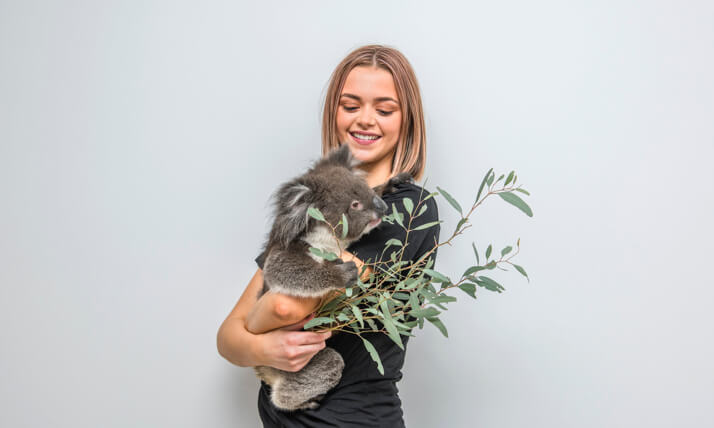 Team member holding koala for encounter Melbourne Corporate Events